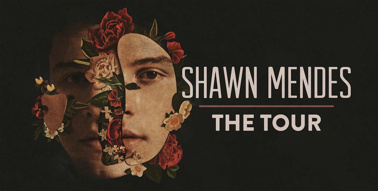Shawn Mendes Concert in Singapore