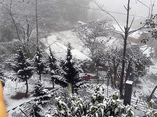 Tuyết phủ trắng những con đường, ngôi nhà ở Sapa