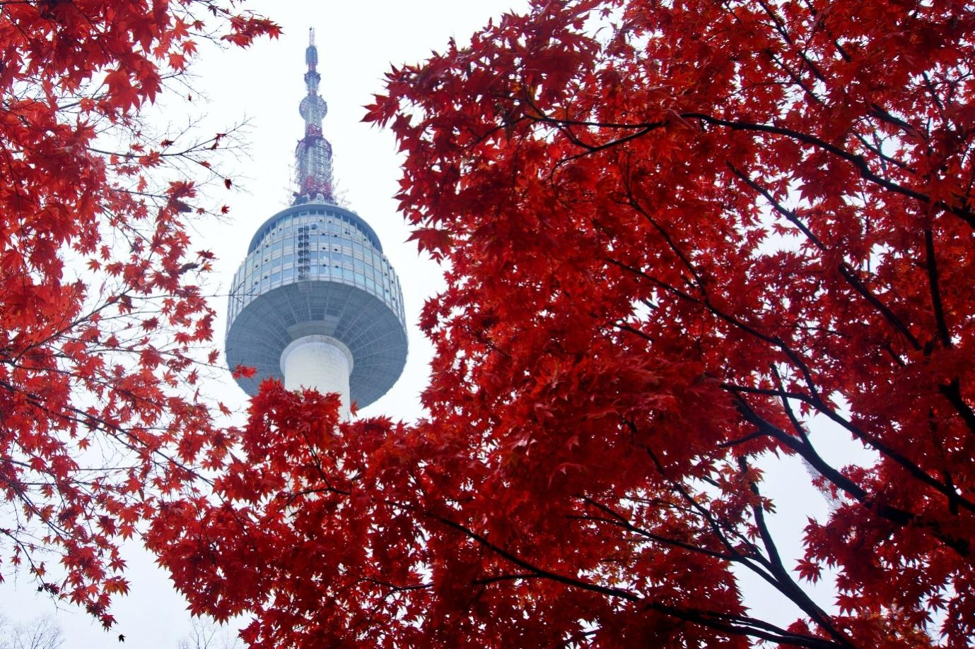 Reasons to visit Seoul
