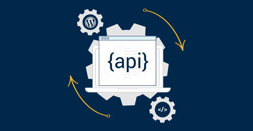 WordPress REST API Complete Beginners Guide – John Academy