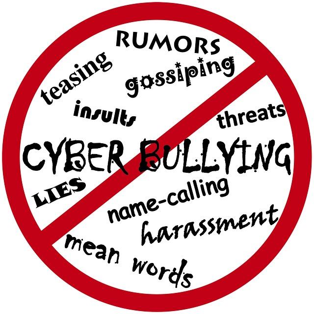 Cyber Bullying, Valentão