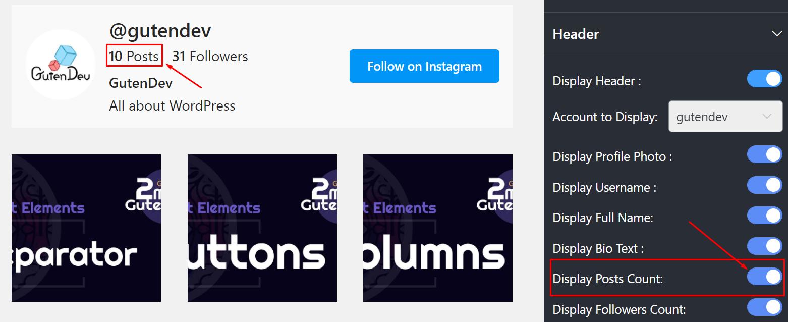 Display posts count Instagram settings
