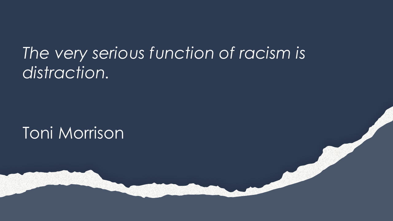 The very serious function of racism is distraction.  Toni Morrison