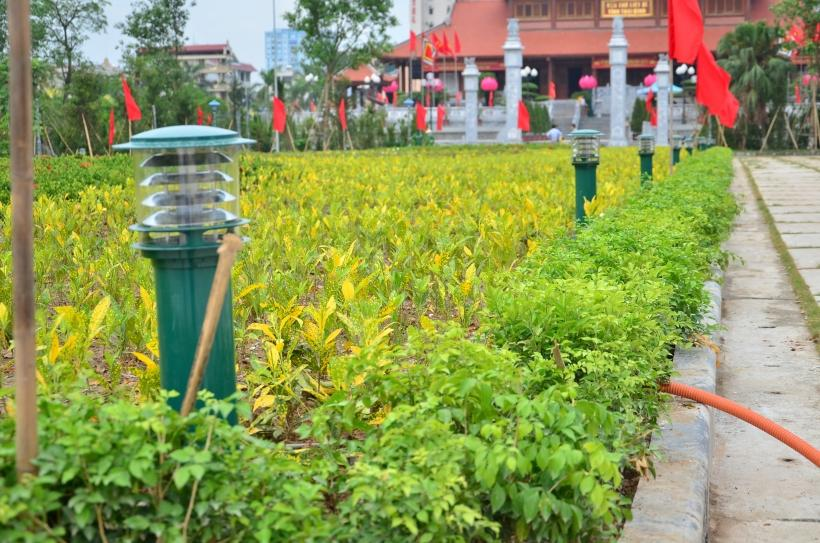 Đèn sân vườn cây thông