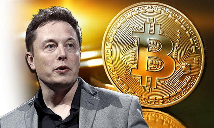 Bitcoin sinks, Elon Musk