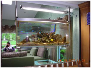 aquarium design - Elliptical Aquarium