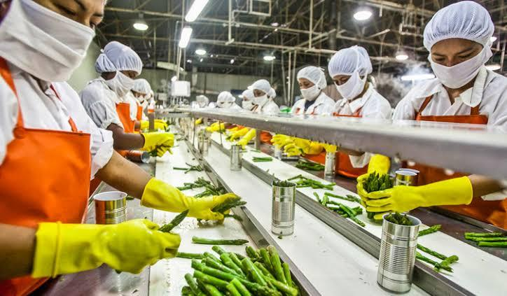 role of quality assurance in the food industry