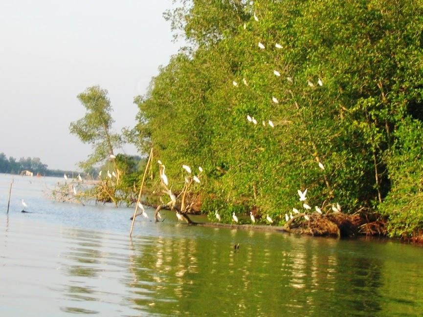20061224Kuala Gula 之旅 167.jpg