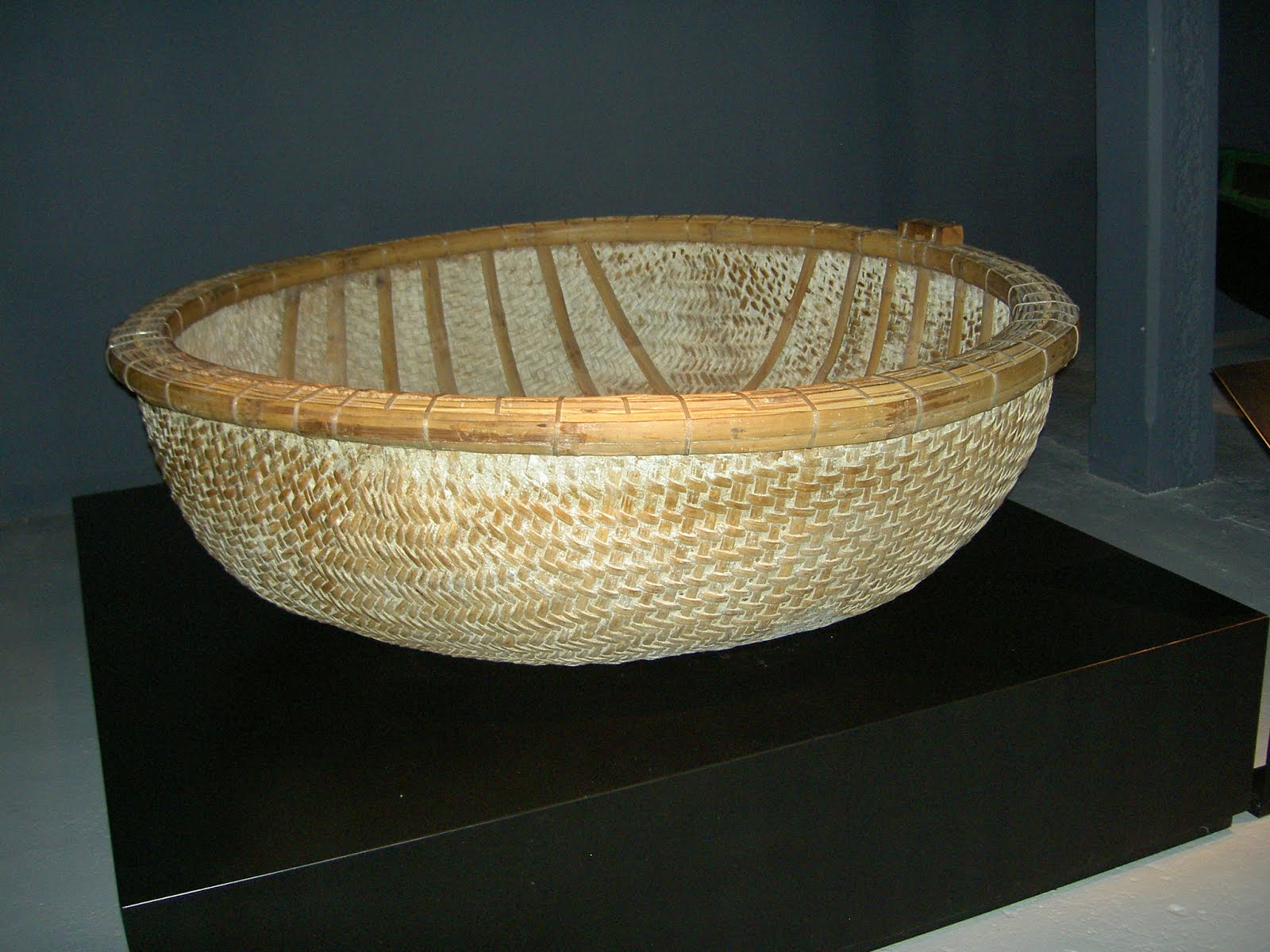 Basket_boat.JPG
