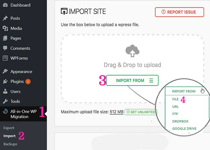 Migrate WordPress Website Import file