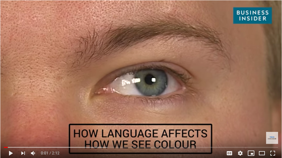 How a Language Affects the Way You See Color