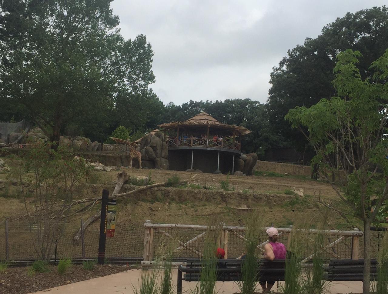 Road Trip: African Grasslands at Omaha\'s Henry Doorly Zoo   Macaroni Kid