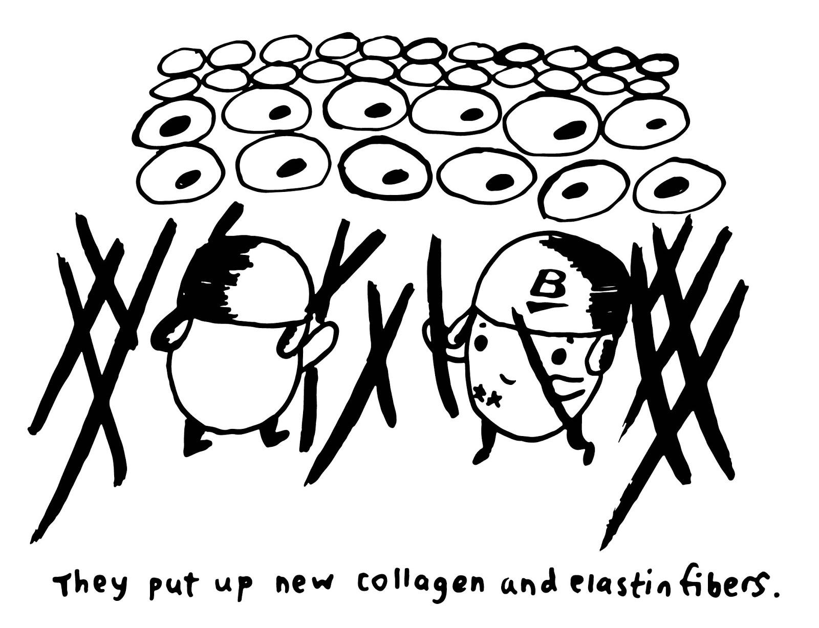 fig-06.jpg
