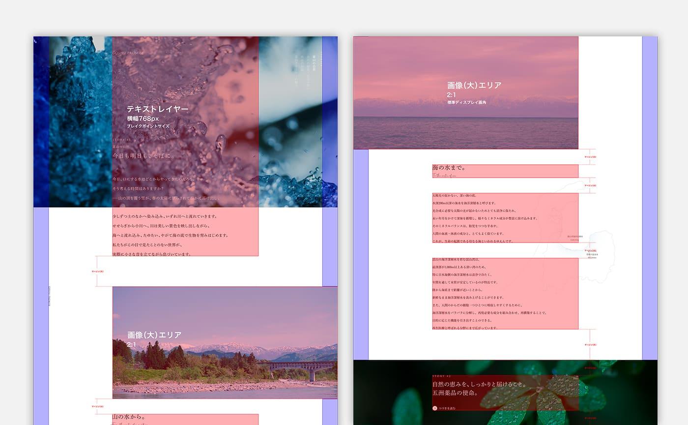 興味喚起と可読性の担保によるブランド理解を目指した GOSHU PROMISE のデザインルール