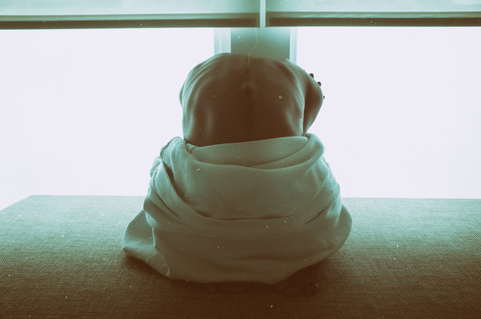 What are PTSD symptoms?