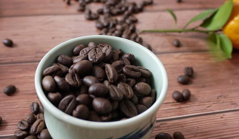Motherland nơi cung cấp cà phê robusta, cà phê hạt giá sỉ tốt nhất thị trường
