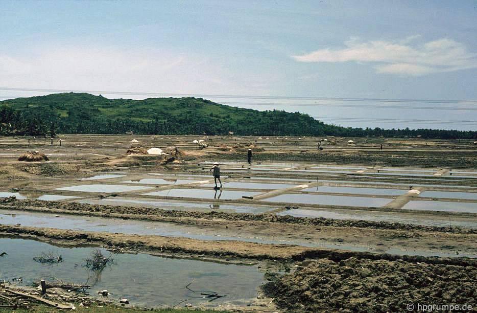 sản xuất muối