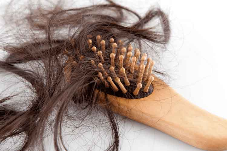 shedding-hair1
