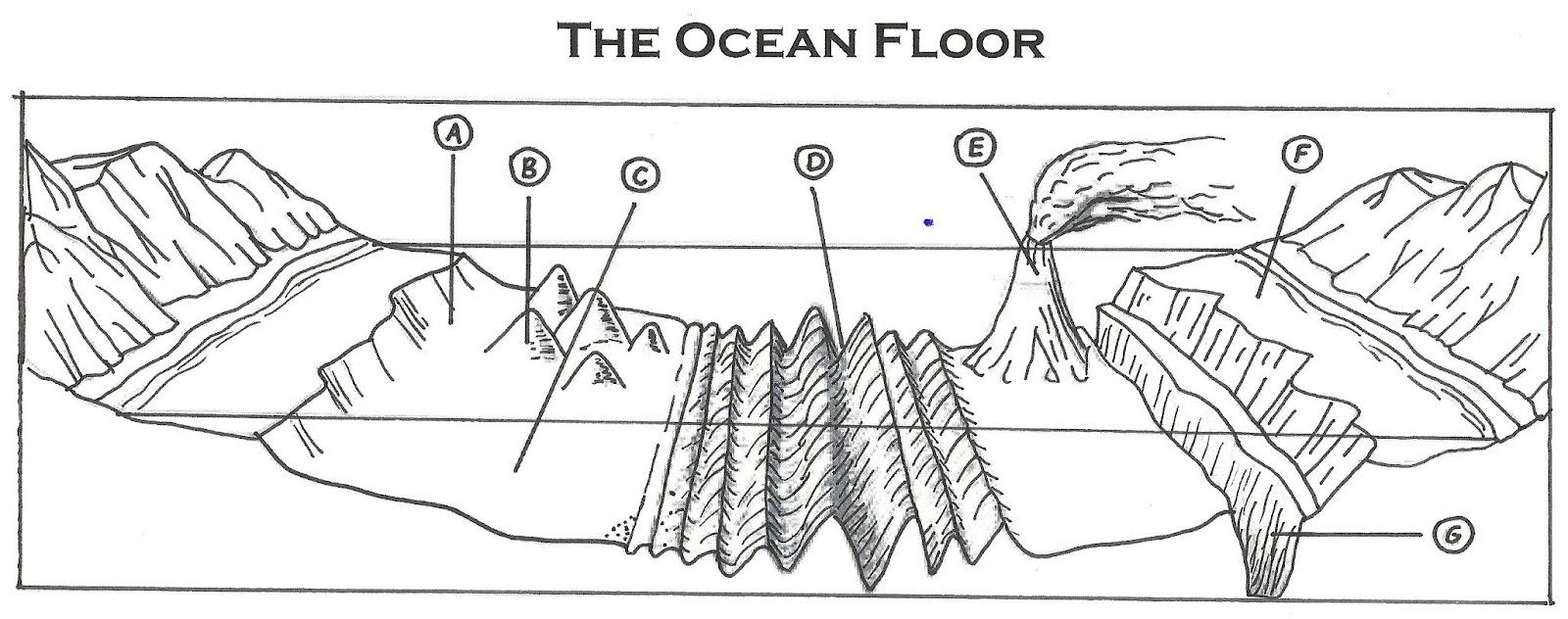 ocean floor feature review 2