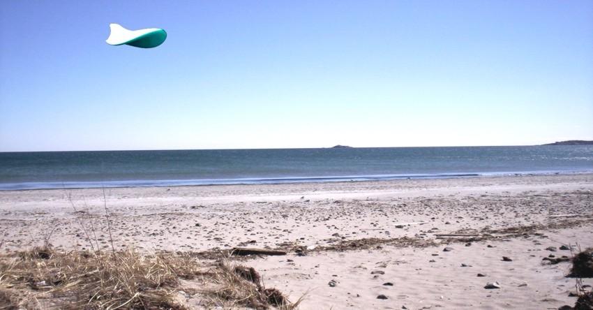 beachwith.jpg