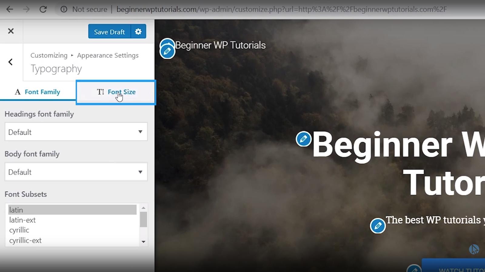 font size wordpress tutorial for beginners