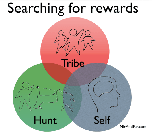 Searching for rewards
