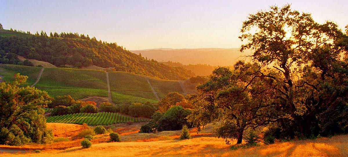 Visit Sonoma Valley - Sonoma Valley Escapes