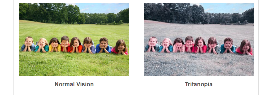 group of kids in a field color blindness awareness