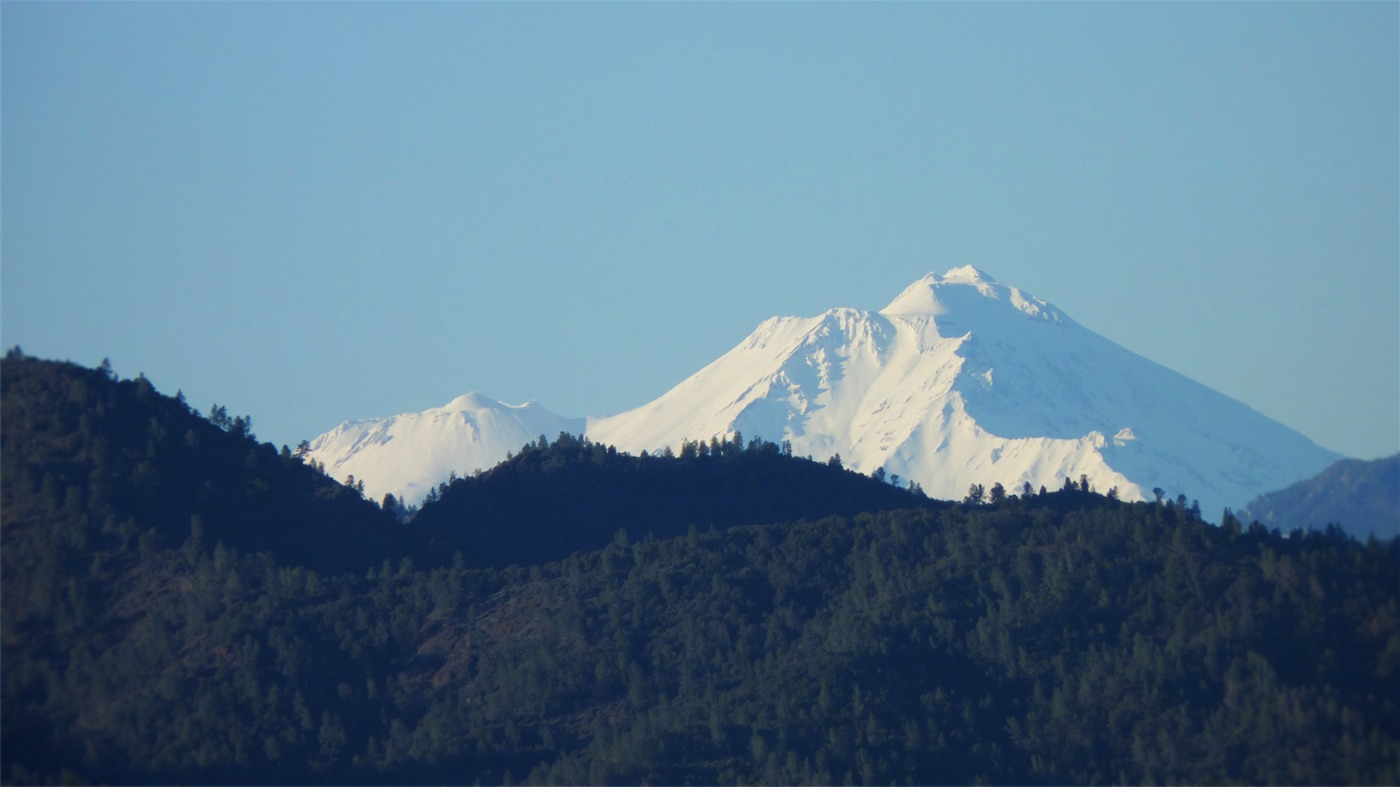 RAW Shasta copy.jpg