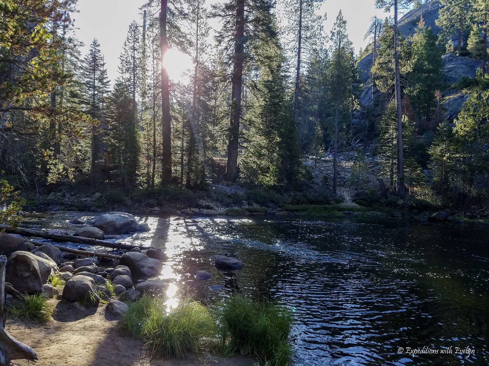 The Merced River calmly flows through the forest as the sun rises through the trees illuminating the rocks on the river bank.
