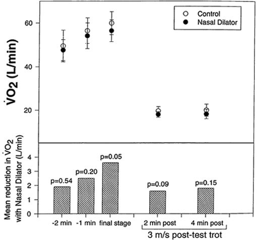 Nasal strip application reduced pulmonary oxygen uptake (VO²) in six horses running at an average of 12 m/s (final stage) [86].