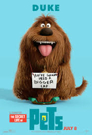 Image result for the secret life of pets duke