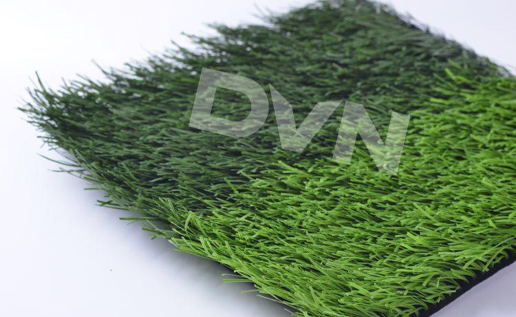 1. Lịch sử cỏ nhân tạo Sóc Trăng 1