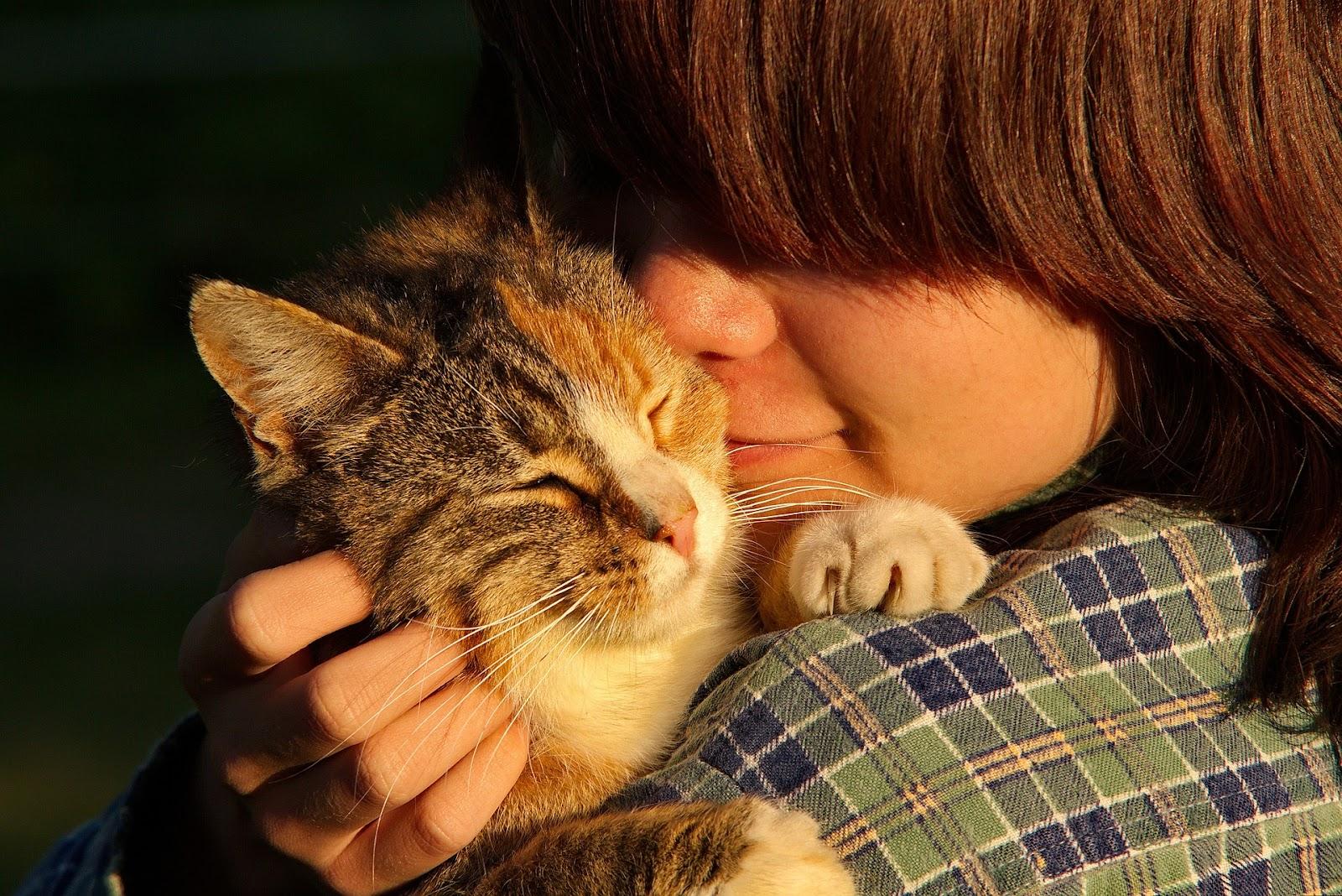 cat cuddling with child