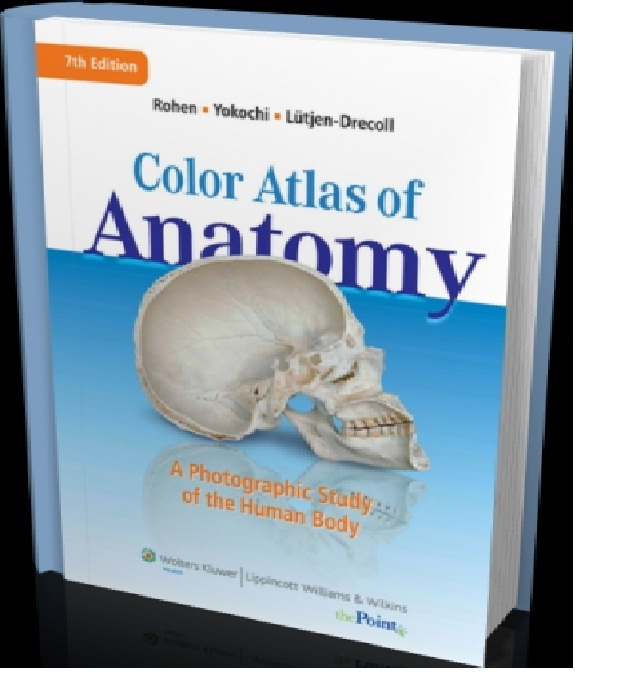 Details about Color Atlas of Anatomy 7TH EDITION E BOOK PDF ebooks ebook  free shipping