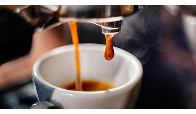 Nguyên liệu, chất phụ gia được phép sử dụng khi chế biến cà phê arabica