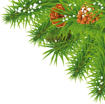 https://png-images.ru/wp-content/uploads/2014/11/fir_tree_PNG3693.png