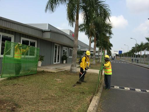 Chăm sóc cỏ cũng là dịch vụ được công ty đảm nhận