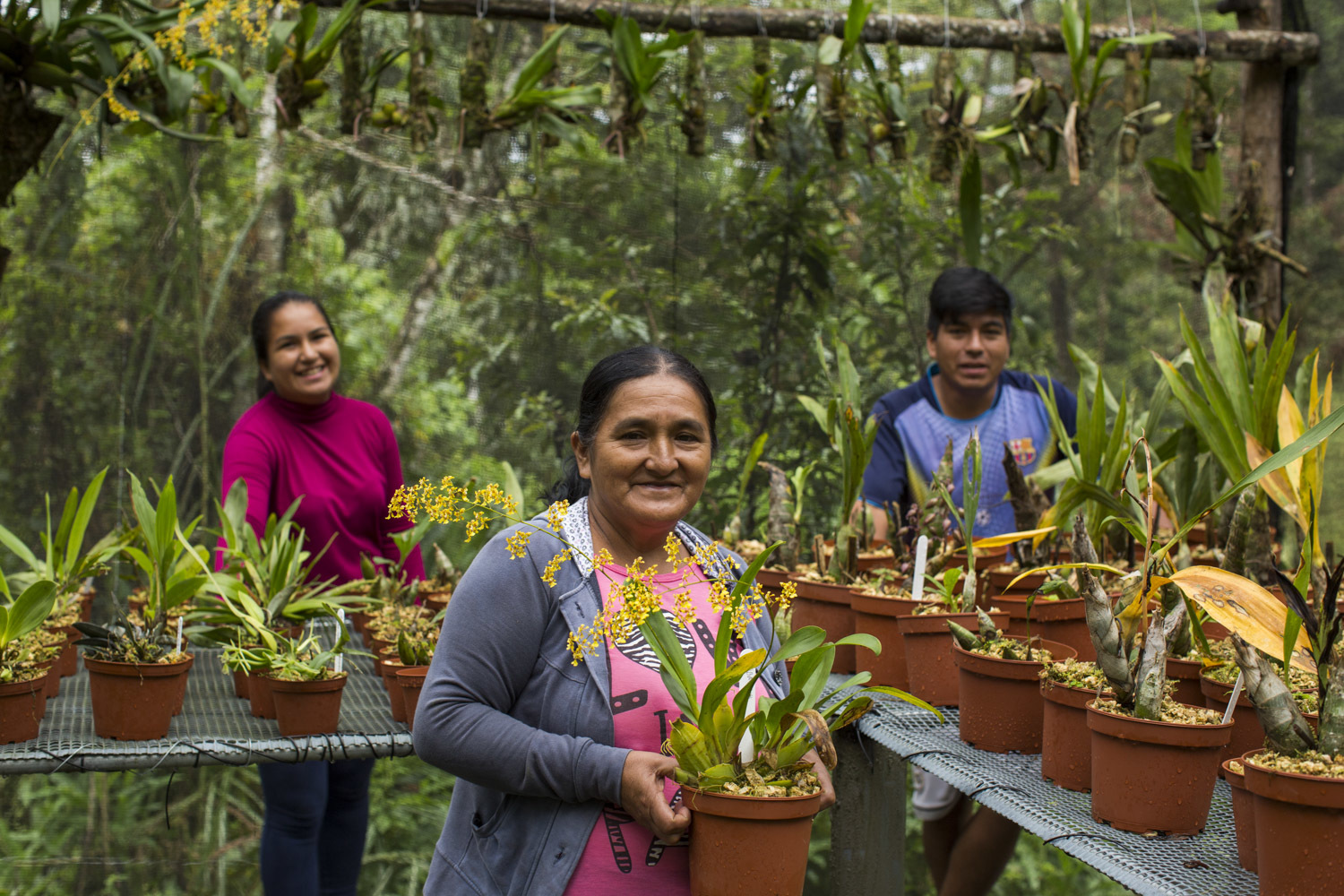 A smiling older woman holds a potted plan in her hand as two young people smile behind rows of potted plants behind her.