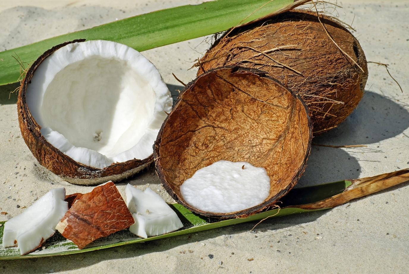 coconut meat and milk
