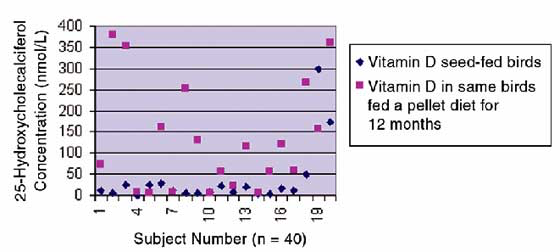 Effect of diet on vitamin D concentrations in African grey parrots