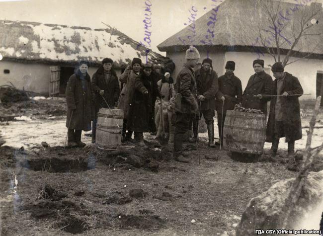 На фото одна із тисяч буксирних бригад, яка конфісковувала у селян продовольство. В їхніх руках металеві штики ‒ щупи. Ними радянські активісти шукали у землі заховане зерно, а насправді – всю знайдену їжу