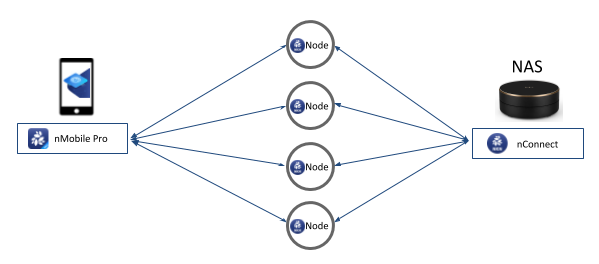 Fig1: NKN Tunnel via multiple parallel relay node