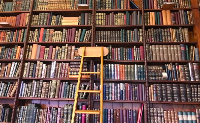 Книжный бунт