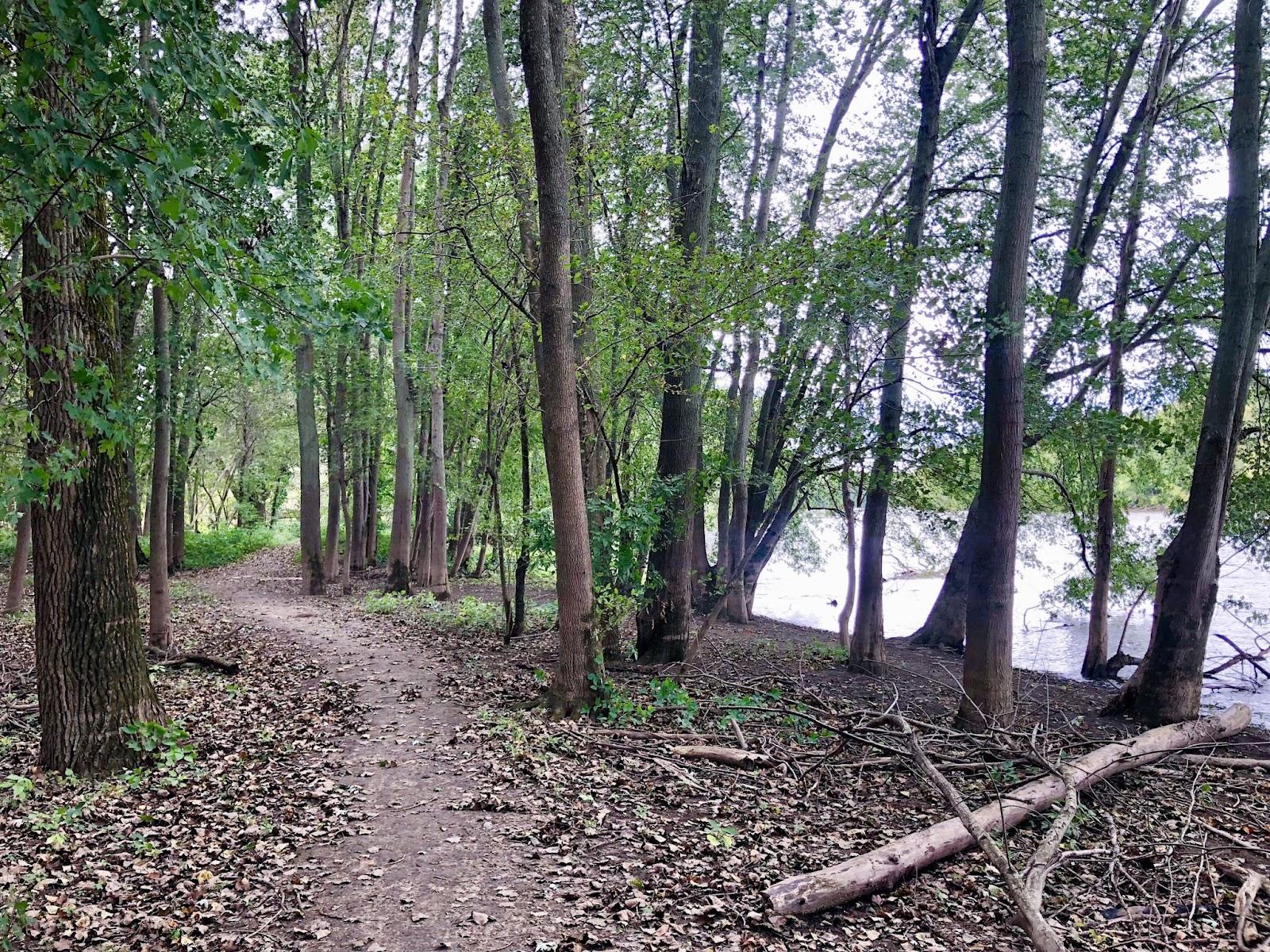 Hiking Trails Grand Rapids