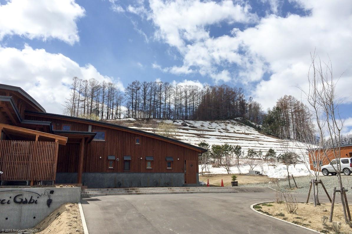 丘陵に佇むぶどう畑のワイナリー・レストラン「OcciGabi(オチガビ)」