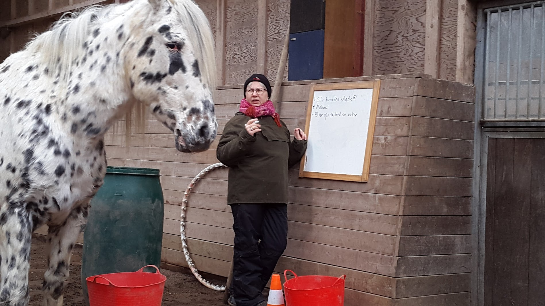 """""""I situation med hestene, oplevede jeg at kunne arbejde med hesten gav forskellig respons ud fra min egen grad af selvtillid. Jo mere klar og tydelig og fast jeg var i min kropsholdning, jo bedre respons med hesten. Jo mere jeg samtidig kunne læse hesten grænse, jo bedre respons."""" Hun fortsætter: """"Et værdifulde redskab i personlig udvikling gennem arbejdet med hestene Som """"biprodukt"""" af kursuset har jeg fået knækket min opadgående vægtkurve. Min afhægighed at mad er stort set normaliseret. Jeg har haft ganske få tilbagefald som hurtigt blev vendt til positiv adfærd. Endnu engang. Jeg har fået meget forskelligt med fra kursuset og det bundfalder sig lidt efter lidt."""" På spørgsmålet: . Det at træffe valg, og tage ansvar for det valg du traf, fortæl om det. Erna svarer """"Det er blevet meget tydeligt for mig, hvilke mekanismer der er i spil, hvilket gør at jeg er øver mig mere og mere i at holde fast og mærke efter i hvilke er mine valg og hvornår mine valg er funderet på min forventning om at andre vil have mig til at træffe et bestemt valg""""."""