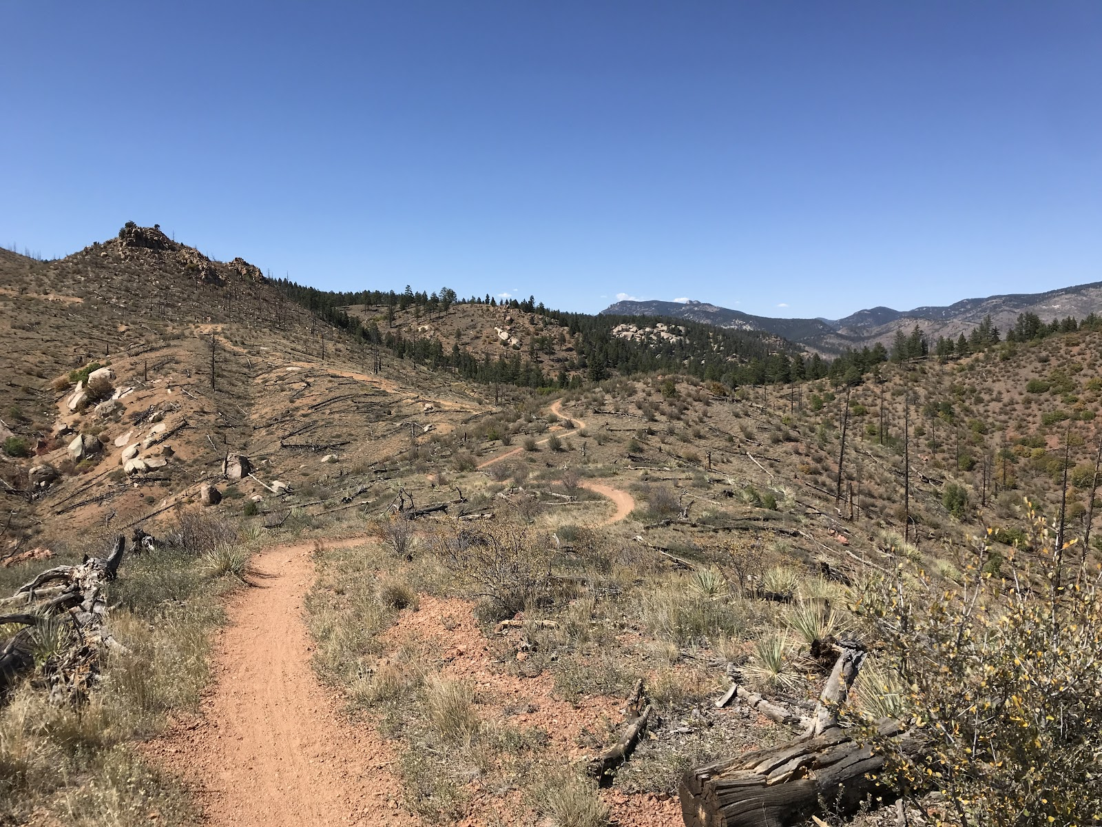 A Colorado Trail hiker goes many miles between water sources.