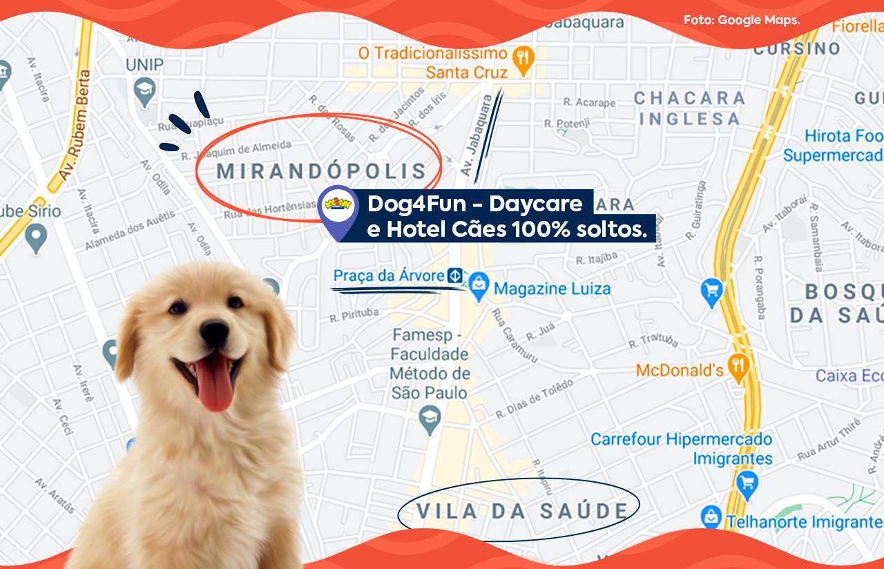 Foto: mapa da localização da Dog4Fun - Creche e Hotel para Cachorro em SP, no bairro de Mirandópolis. Fonte: Google Maps.