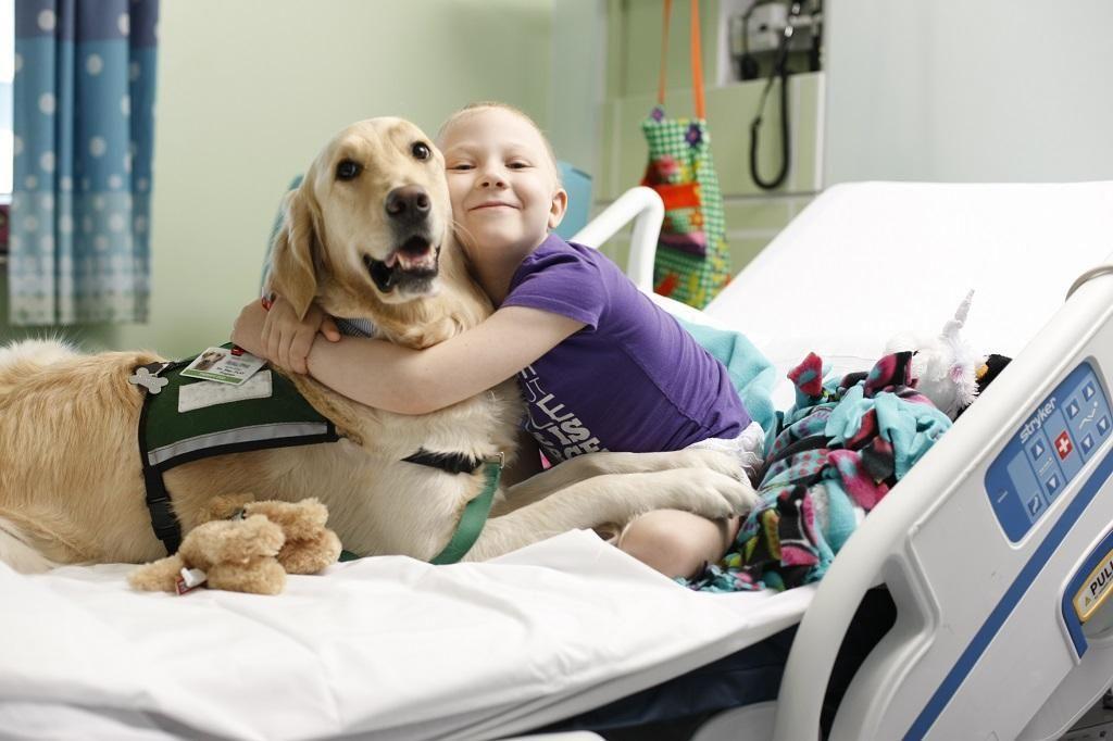 Los perros del TACA que trabajan contra el cáncer infantil en el Hospital de Niños